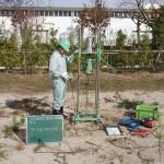 地盤調査(スウェーデン式サウンディング試験)
